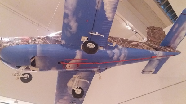 Miguel Palma, Google Plane 1968-2008, 2008, vue d'en bas